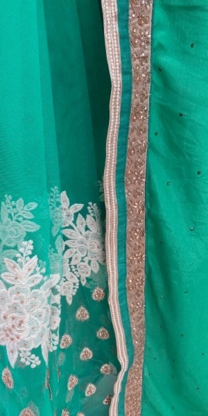Lavish Green Saree