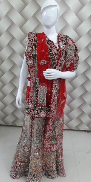 Exclusive multi color lehanga