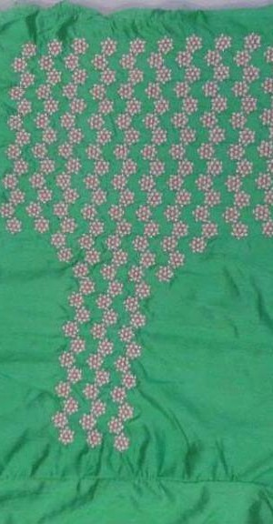 Florence Green Embroidered Saree